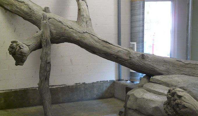 Monkey-Exhibit-Logs-TRU-PAC