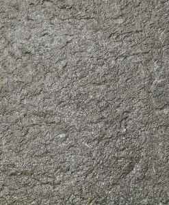 LS306 closeup