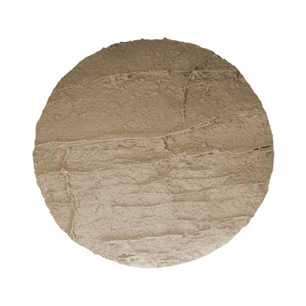 SpidaStamp: Cascade Canyon, Seamless Skin, 9″, Floppy
